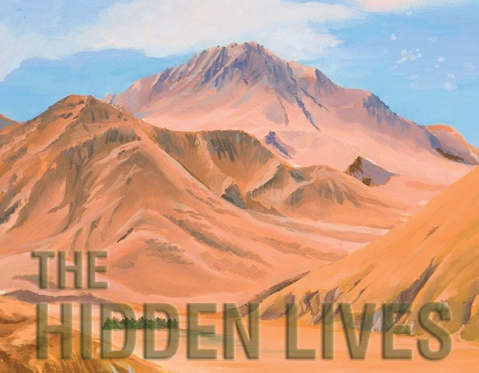 Reflections on The Hidden Lives ofLearners